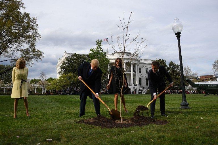 L'arbre planté par Trump et Macron a disparu du jardin de la Maison blanche... pour une bonne raison
