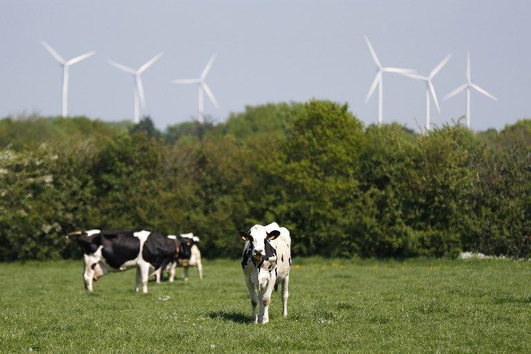 Comment l'écologie et les énergies renouvelables sont devenues le champ d'expérimentation d'un grand n'importe quoi gouvernemental