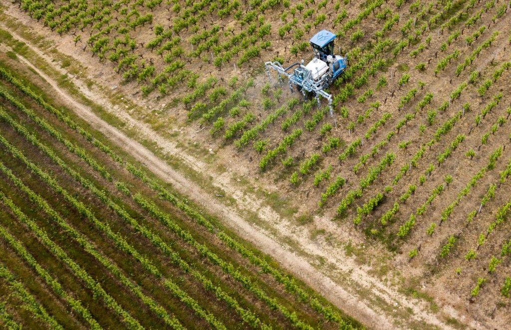 Le nouveau rapport de Greenpeace sur les pesticides induit les consommateurs en erreur