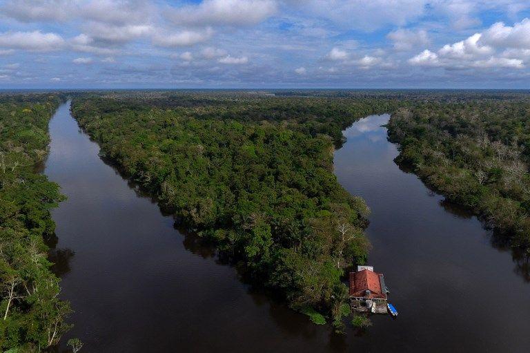 Des chercheurs ont découvert des dizaines de milliers (!) de dessins vieux de 12.500 ans dans la forêt amazonienne