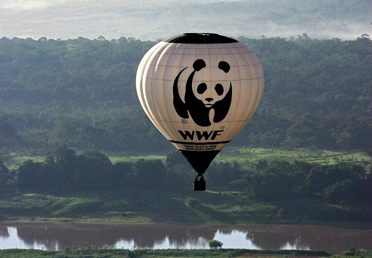 Meurtres, tortures, viols : les lourdes accusations contre WWF