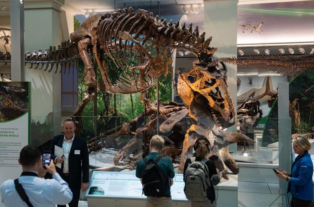 L'astéroïde à l'origine de l'extinction des dinosaures aurait suivi la trajectoire la plus dangereuse possible