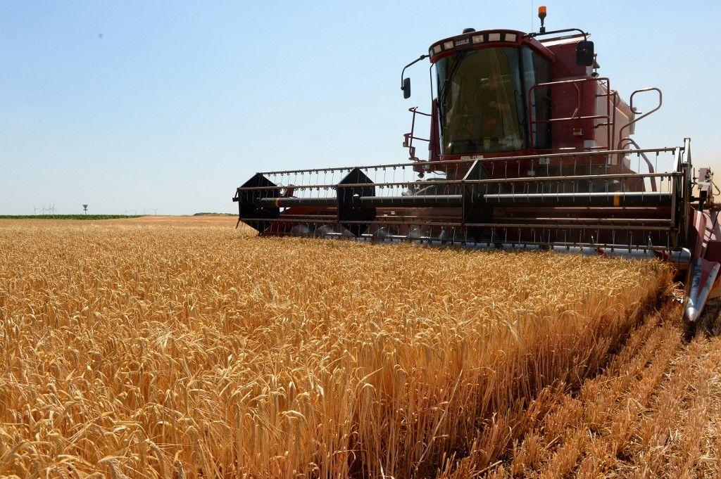 Cette accumulation de tâches qui poussent à bout nos agriculteurs
