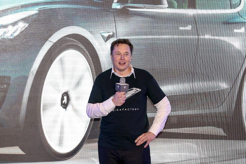 Le conducteur d'une Tesla évite de justesse un sanglier grâce à la technologie du véhicule