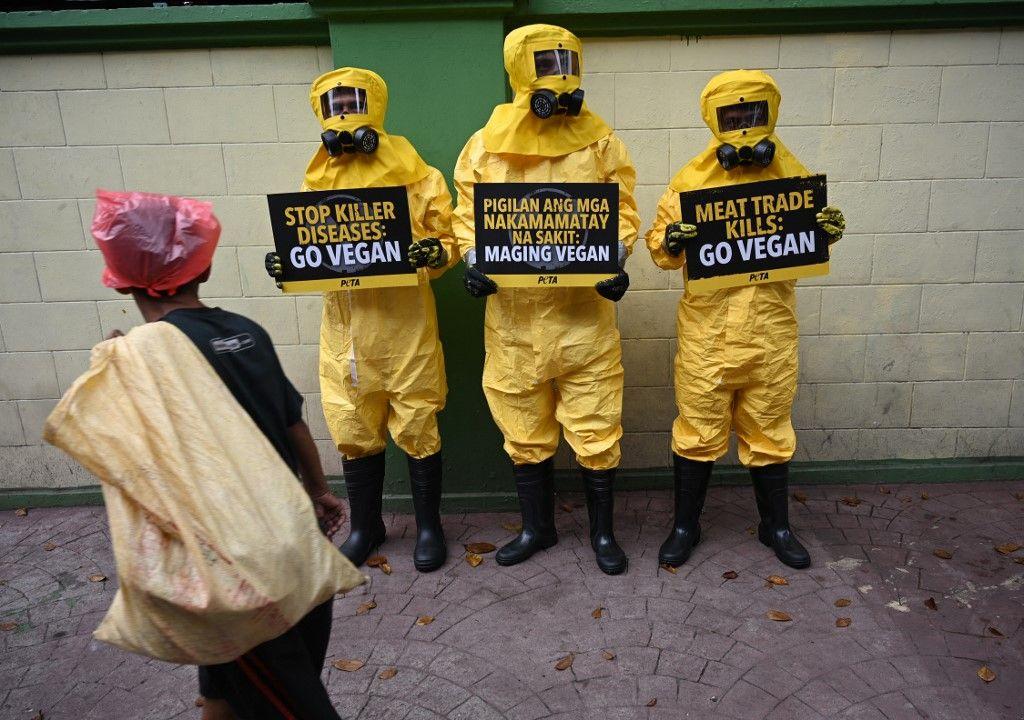 Risque de pandémie au Coronavirus : l'étrange silence des agneaux écolos