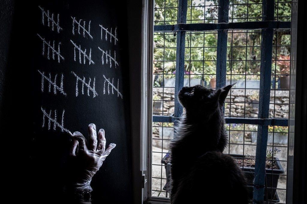 Petits conseils pour éviter la dépression des chats à nouveau seuls après le déconfinement