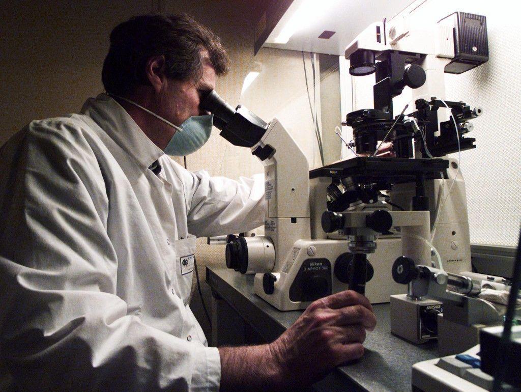 Un Professeur du Centre d'étude et de conservation du sperme humain à Rennes effectue une micro-injection d'un spermatozoïde dans un ovocyte.