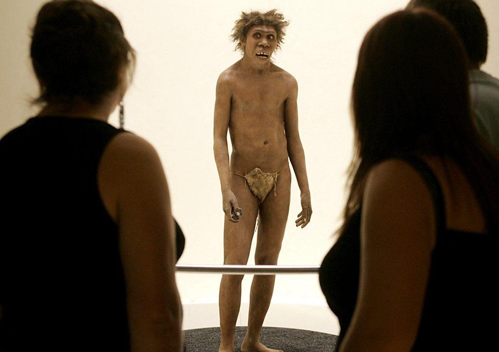 Une représentation de l'homme de Néandertal dans un musée.