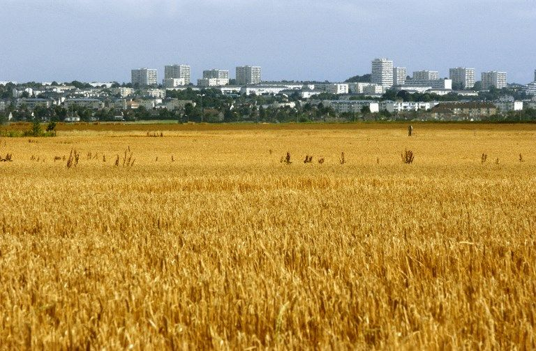 Adieu Paris, Lyon ou Lille ? Le mirage d'un exode urbain post-Coronavirus