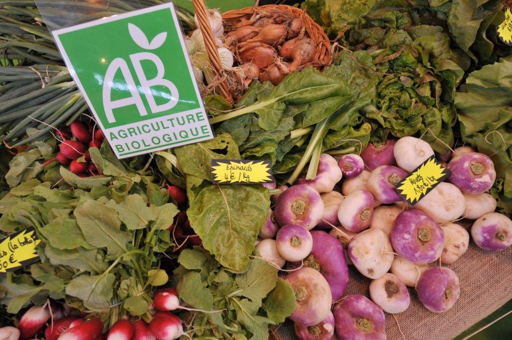 agriculture biologique légumes