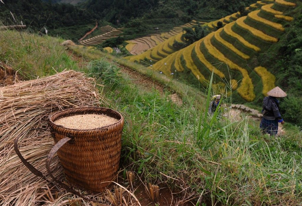 Confinement J15 : tensions en vue sur la distribution et (une partie de) l'alimentaire