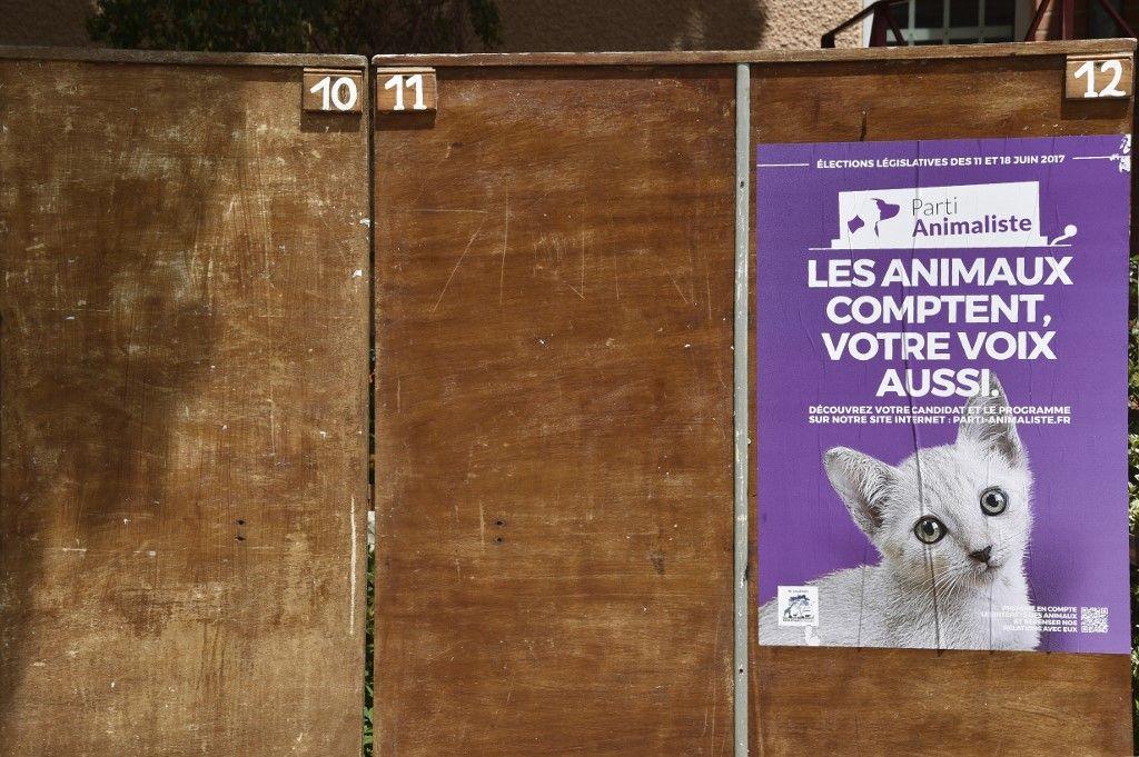 Les électeurs animalistes : nouvelle île de l'archipel français