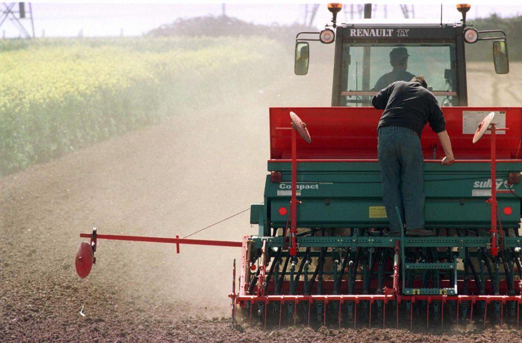 Un agriculteur au coeur de son exploitation agricole.