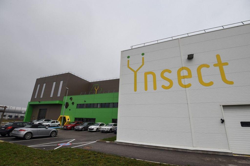 """La ferme expérimentale d'insectes """"Ynsect"""" à Dole, dans l'est de la France, est photographiée le 8 février 2018, une installation qui produit des protéines de première qualité."""