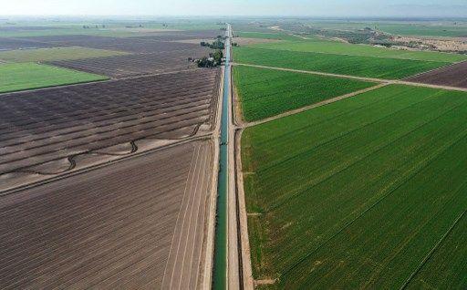 L'agriculture serait aussi émettrice de CO2 que les centrales à charbon.