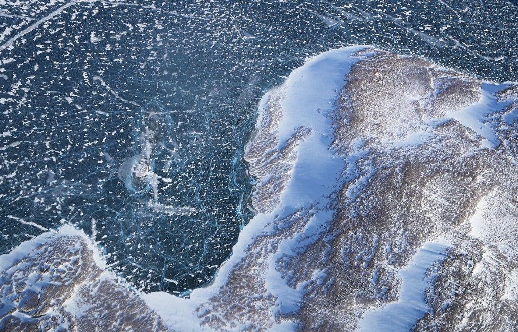 Les défenses des narvals révèlent l'inquiétante évolution de l'Arctique.