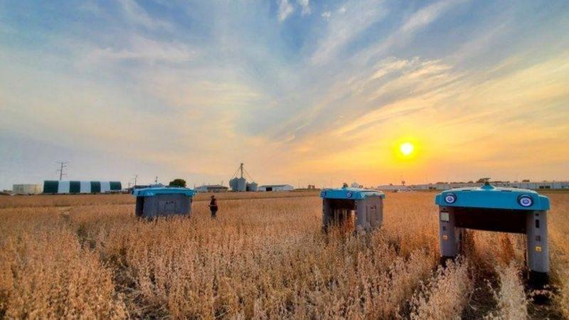 Google robots agriculture plante