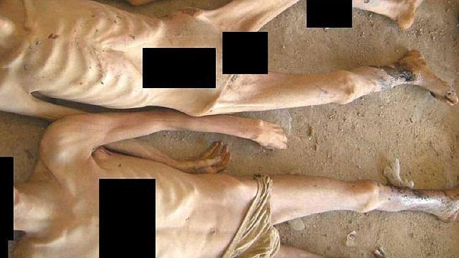 Le New York Times faisait récemment écho de 55 000 images tirées des geôles de Bachar al Assad