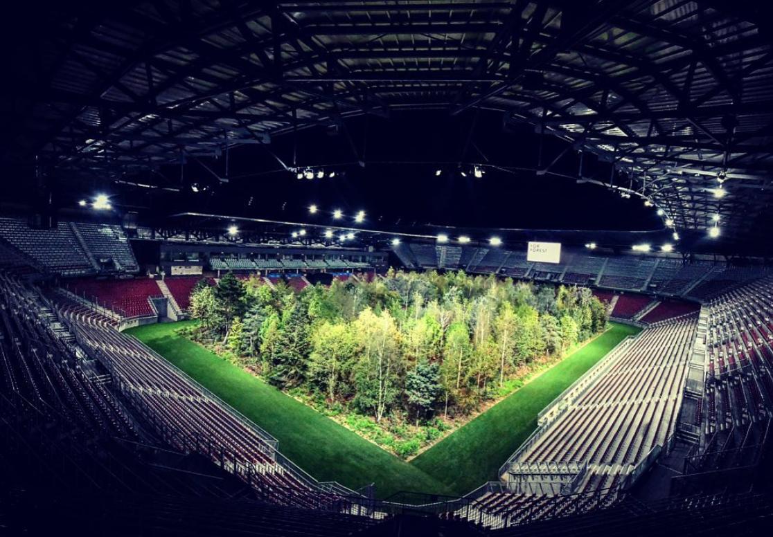 Une forêt de 300 arbres voit le jour en plein milieu d'un stade de football