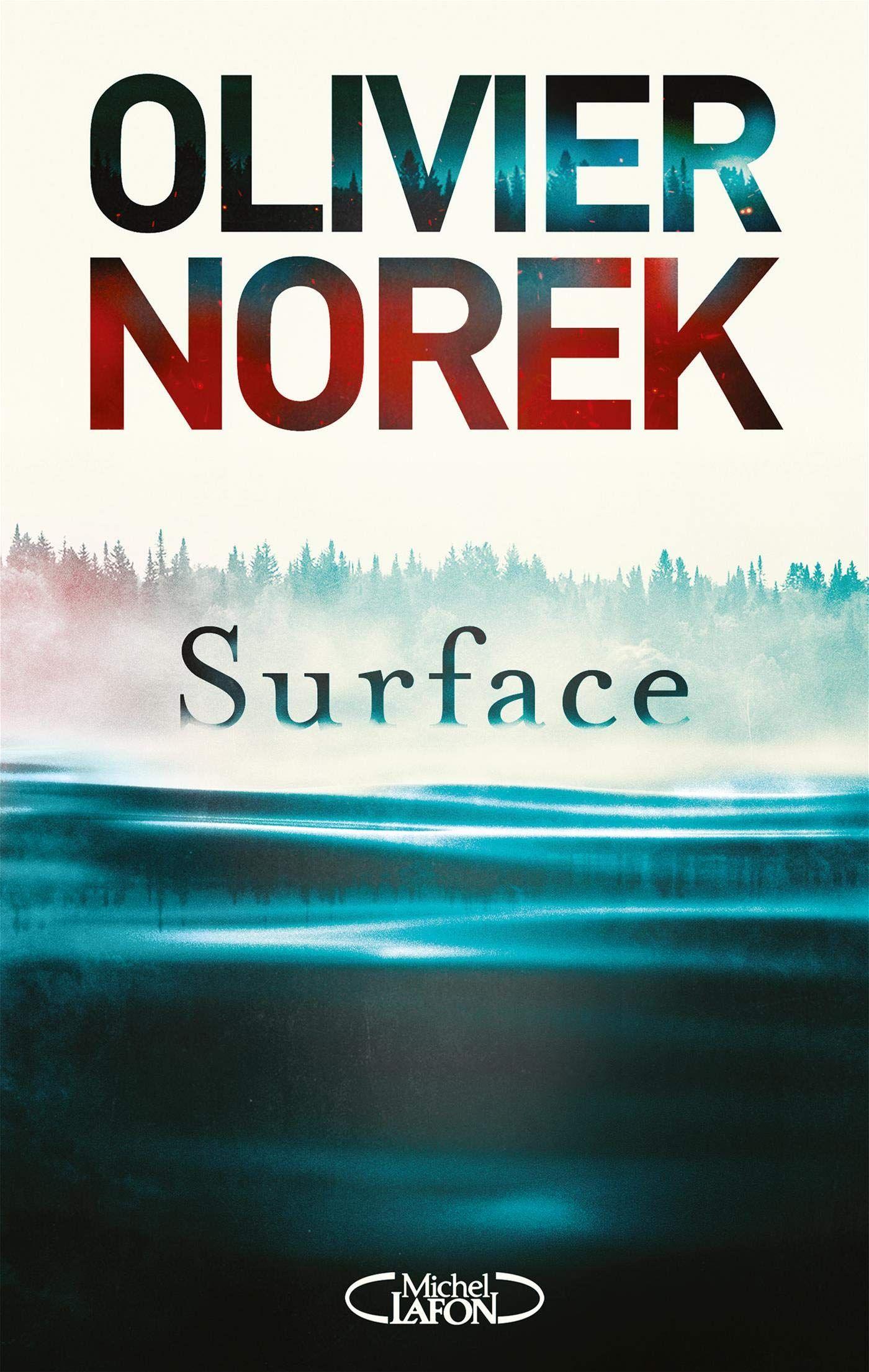 """""""Surface"""" d'Olivier Norek : la découverte d'un corps disparu depuis 25 ans relance """"une affaire classée"""""""