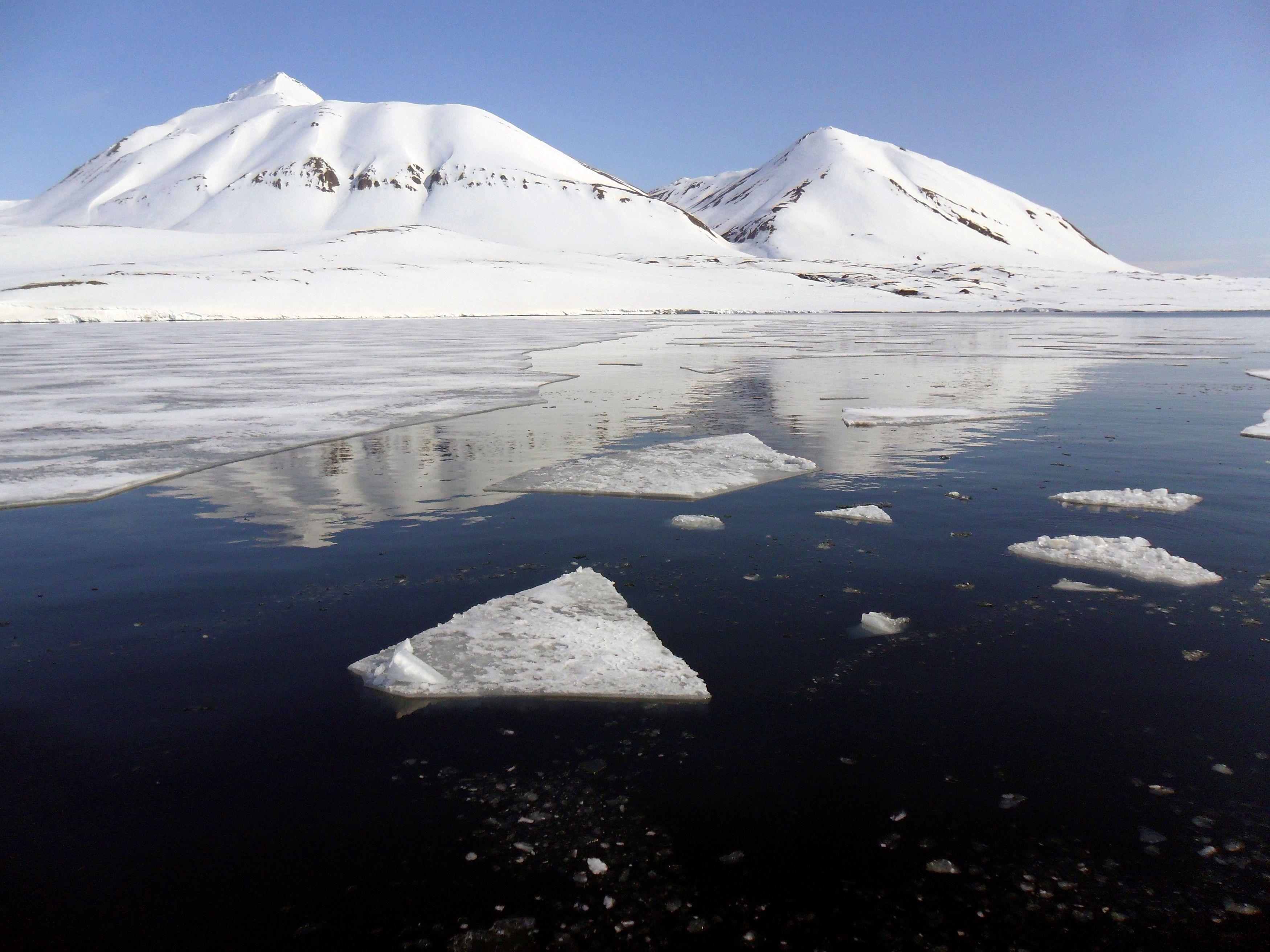Fontes des glaces en Arctique.