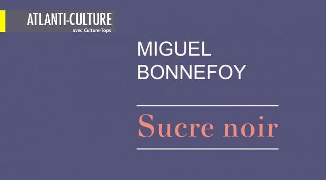 """""""Sucre Noir"""" : Un beau sujet, mais traité de manière plate, sans émotion et sans couleur"""