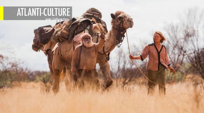 Loin des films tel Lawrence d'Arabie, Wild ou La captive du désert, pour ne citer qu'eux, le désert n'a ici rien de fascinant ni de mythique.