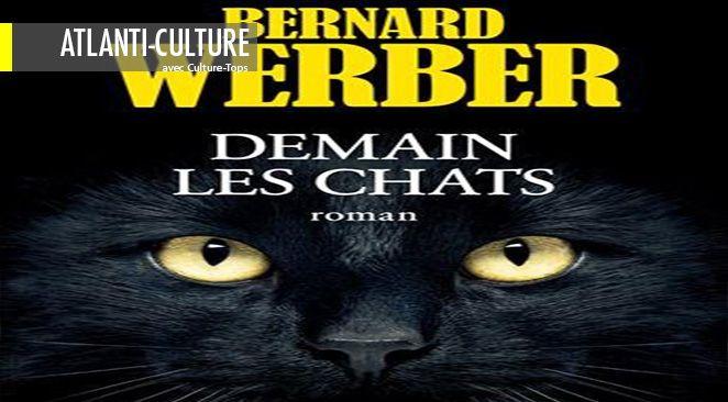 Avec beaucoup d'humour, Bernard Werber utilise l'alibi d'une chatte pour souligner le comportement de l'homme, de notre société, dans le quotidien.