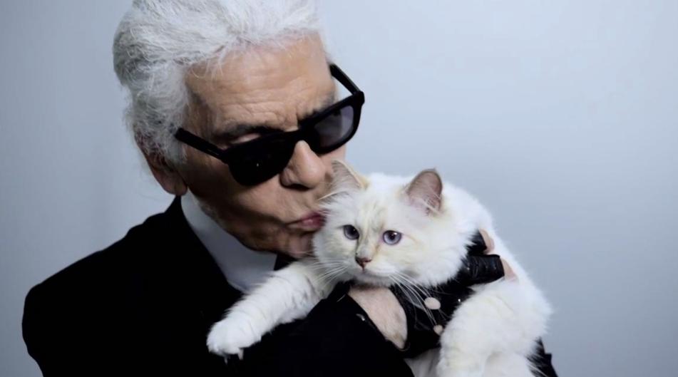 Choupette Lagerfeld : elle se lance dans le maquillage (et la littérature)