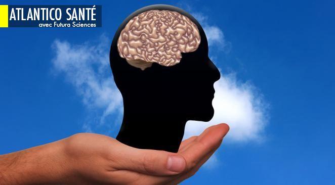 Votre cerveau contiendrait un pétaoctet, soit dix fois plus que prévu ; alcool : enfin une étude sur le baclofène et ses effets indésirables