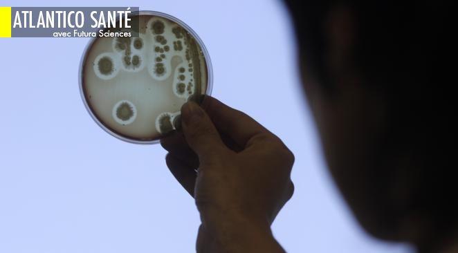 """L'OMS liste 12 """"superbactéries"""" contre lesquelles il est urgent d'agir ; L'espérance de vie va continuer à progresser dans les pays développés"""