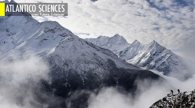 comment les Sherpas ont évolué en surhommes ; Tests antipollution : l'algorithme de Volkswagen décodé