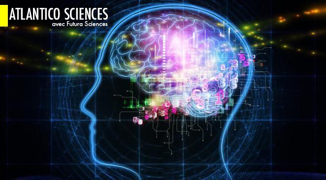 Une synapse artificielle pour reproduire le fonctionnement des neurones ; Votre chat est-il droitier ou gaucher ?