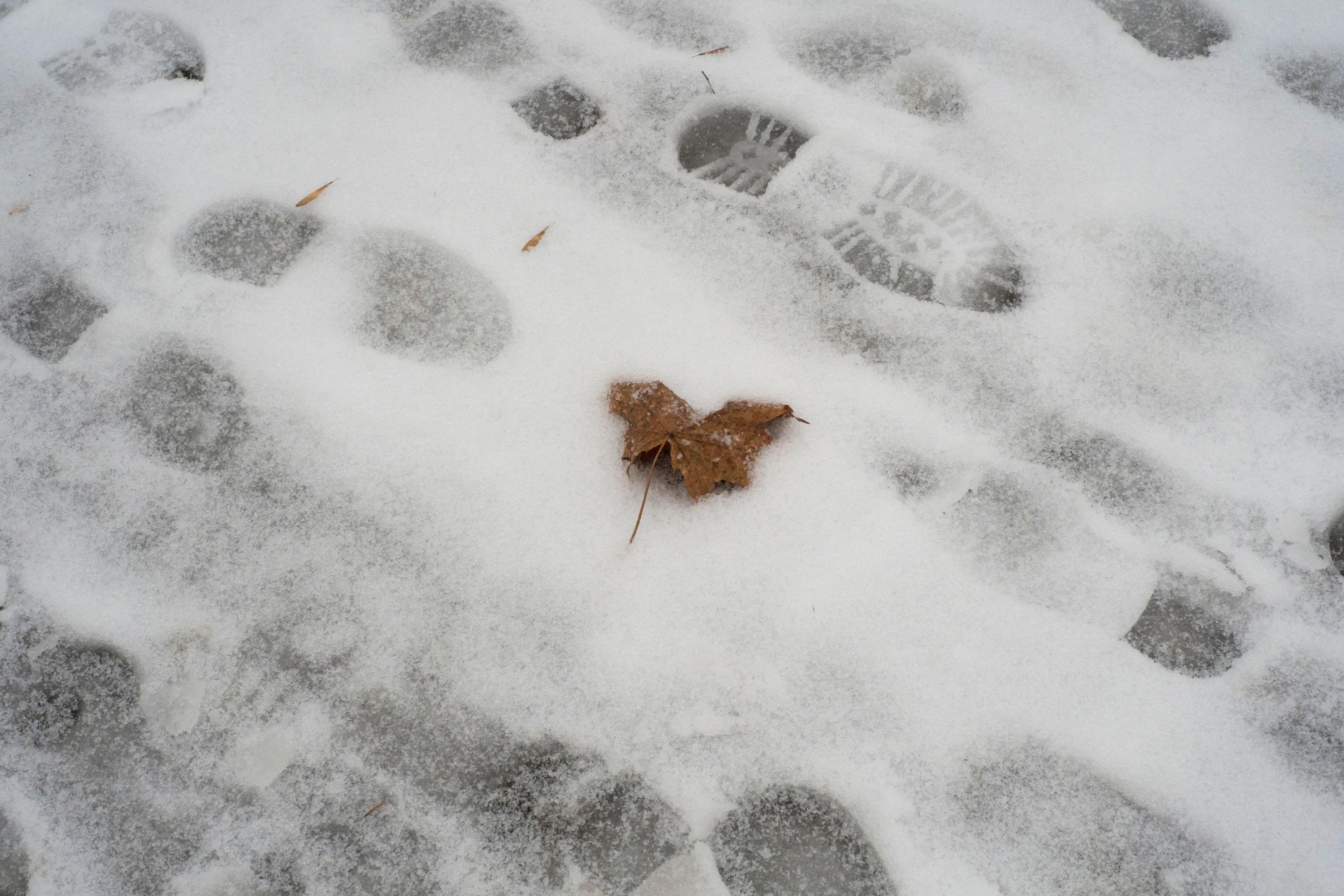 Météo France : la neige revient, l'Ardèche, la Mayenne et l'Orne sont en vigilance orange