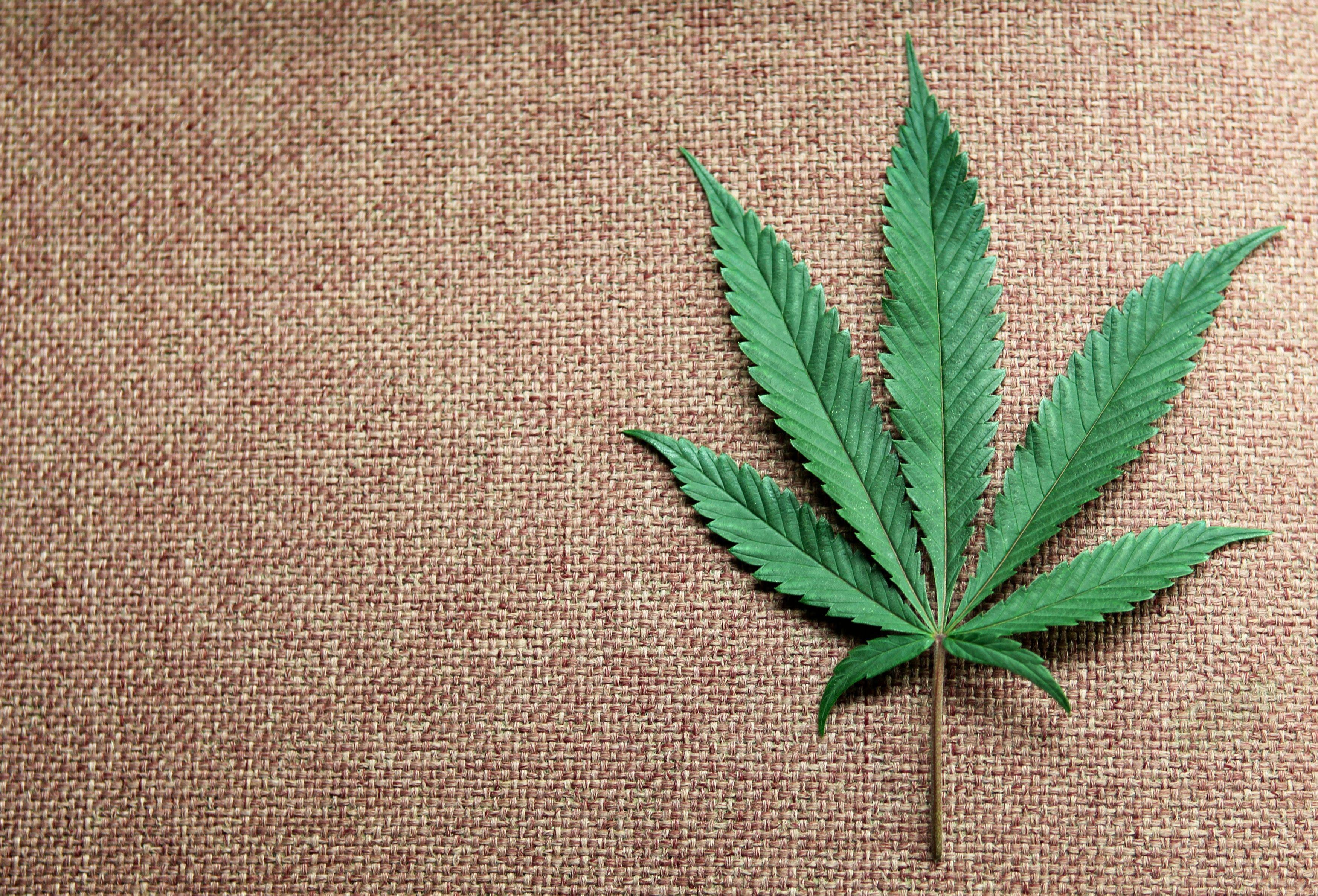 Énorme saisie de cannabis sur un navire en Méditerranée