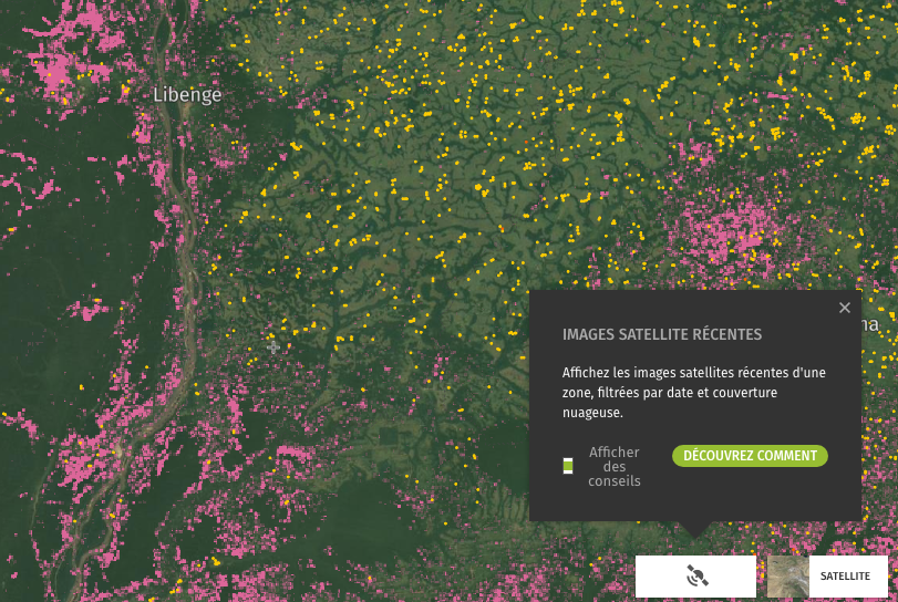 Global Forest Watch