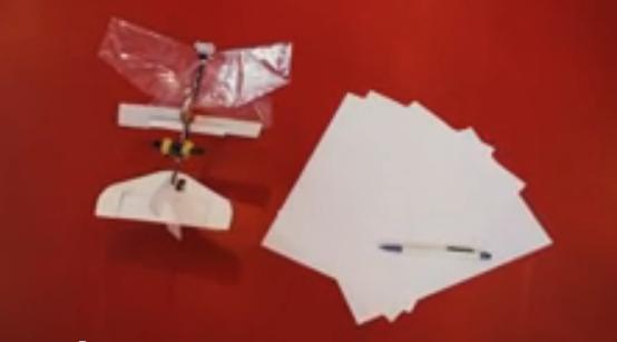 DelFly Explorer : l'insecte-drone, sosie robotique d'une libellule, est né
