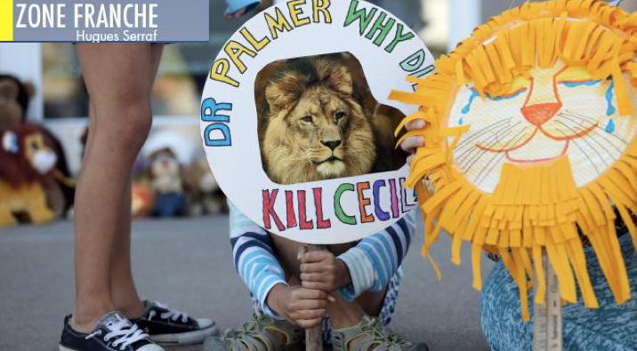 Cecil le lion et les migrants : indignation au carré