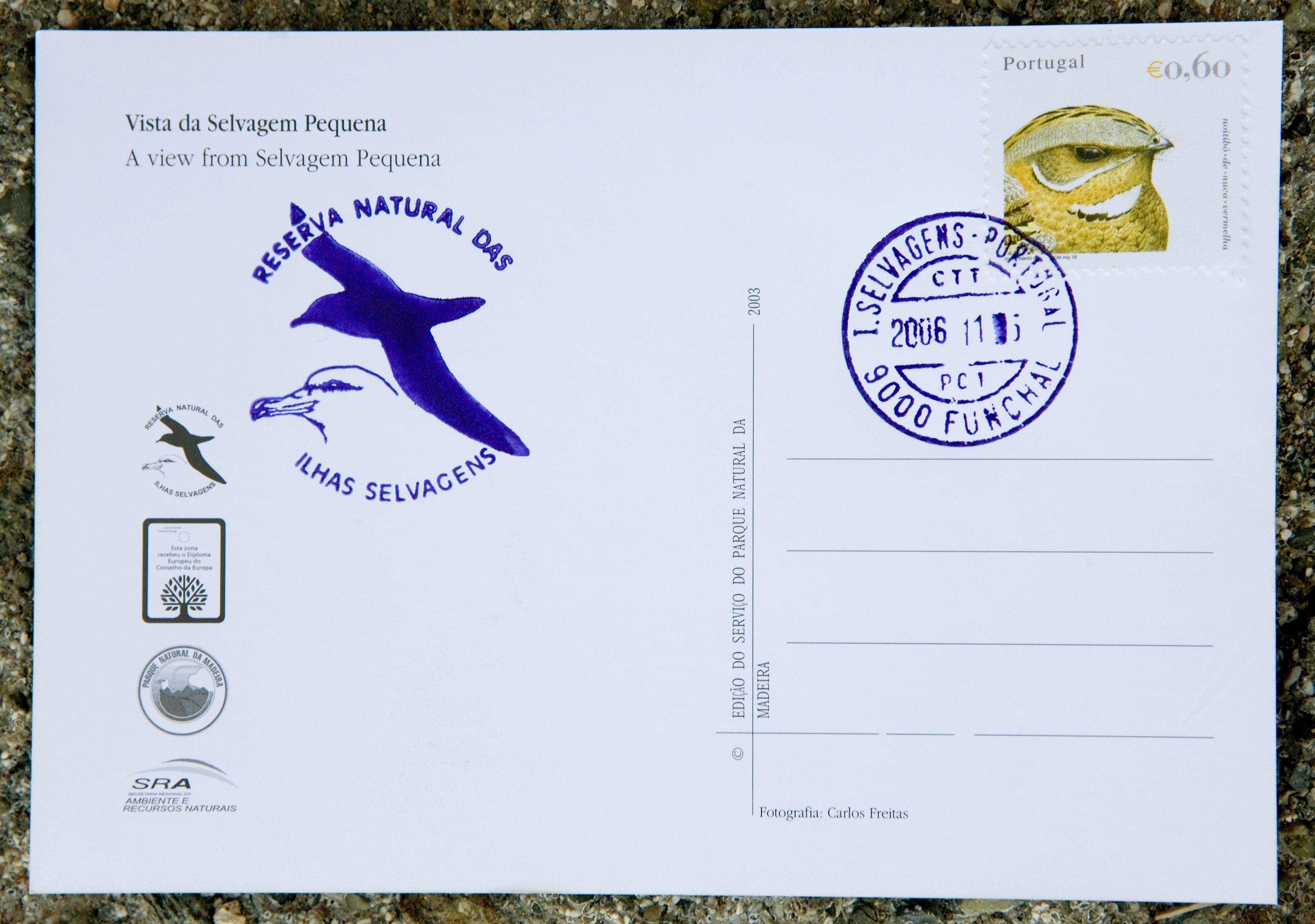 Charente : une carte postale a mis près de 90 ans avant d'arriver à destination