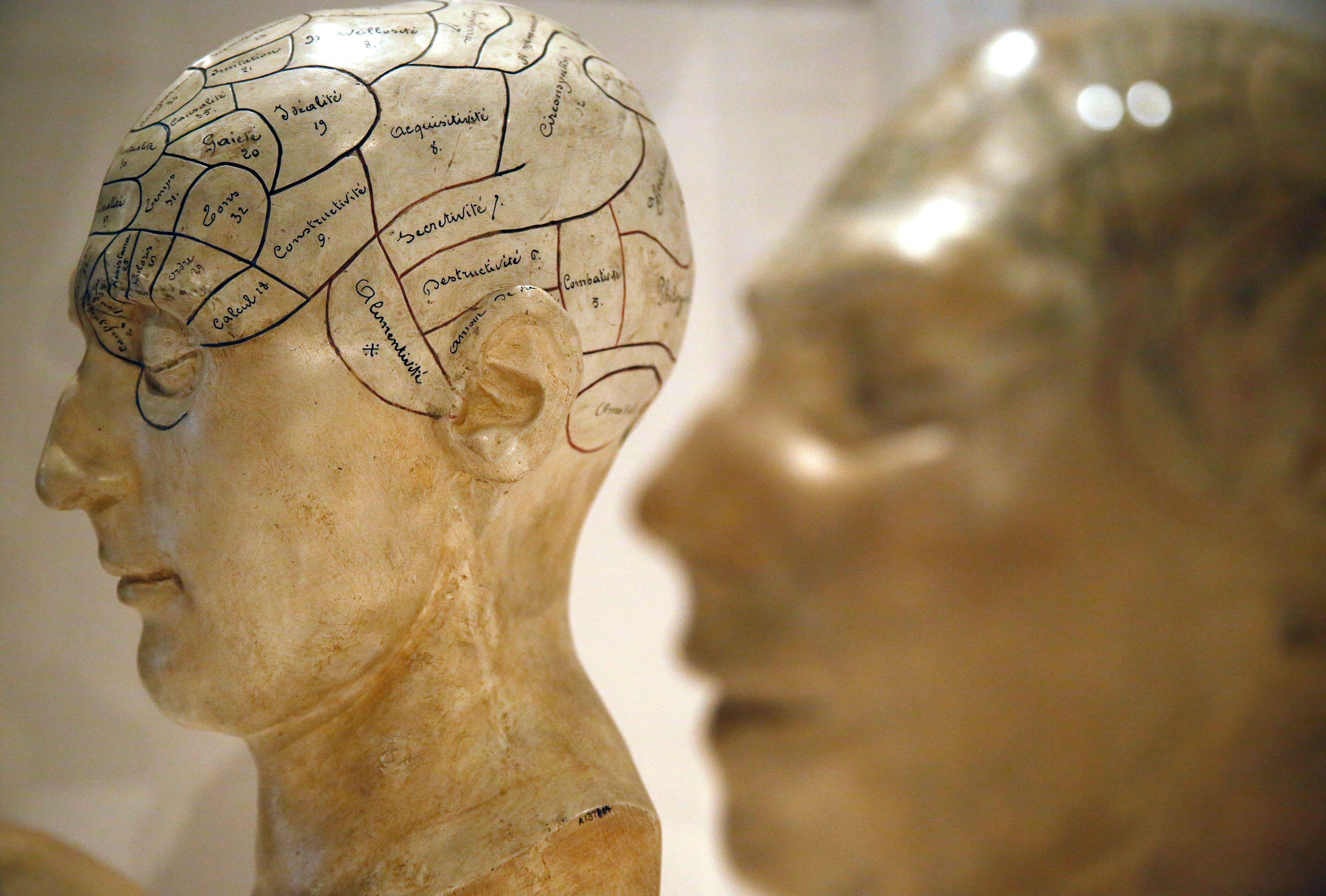 Des chercheurs montrent qu'être pauvre peut affecter l'intelligence en attaquant certaines zones du cerveau