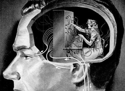 Le cerveau trie en permanence les informations qu'il reçoit.