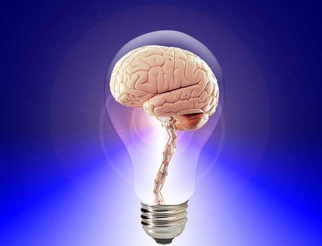 A cause de nos habitudes, le cerveau est en danger