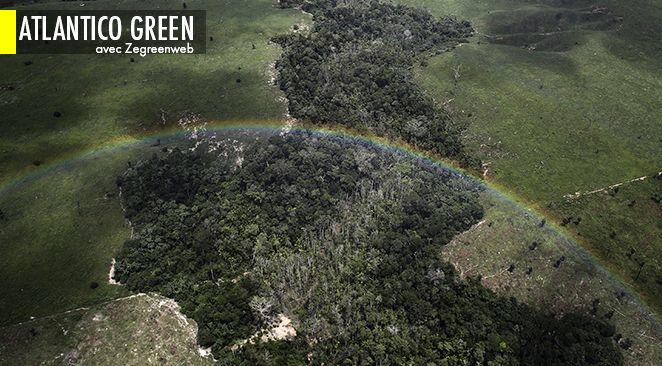 Quand le Brésil tente de faire face à ses défis environnementaux