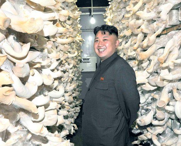 Les Etats-Unis, la Corée du sud et le Japon invitent la Corée du Nord à abandonner l'arme nucléaire