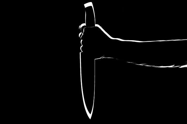 L'Observatoire nationale de la délinquance et des réponses pénales (ONDRP) a établi au travers d'un rapport le portrait-type du meurtrier et de sa victime en région parisienne.