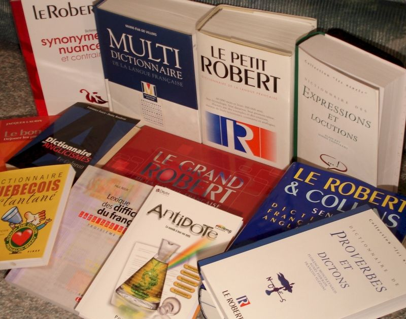 """Les dictionnaires Larousse et Petit Robert se mettent à la mode avec les nouveaux mots """"Selfie"""", """"Beuh"""" et """"Mémériser"""""""