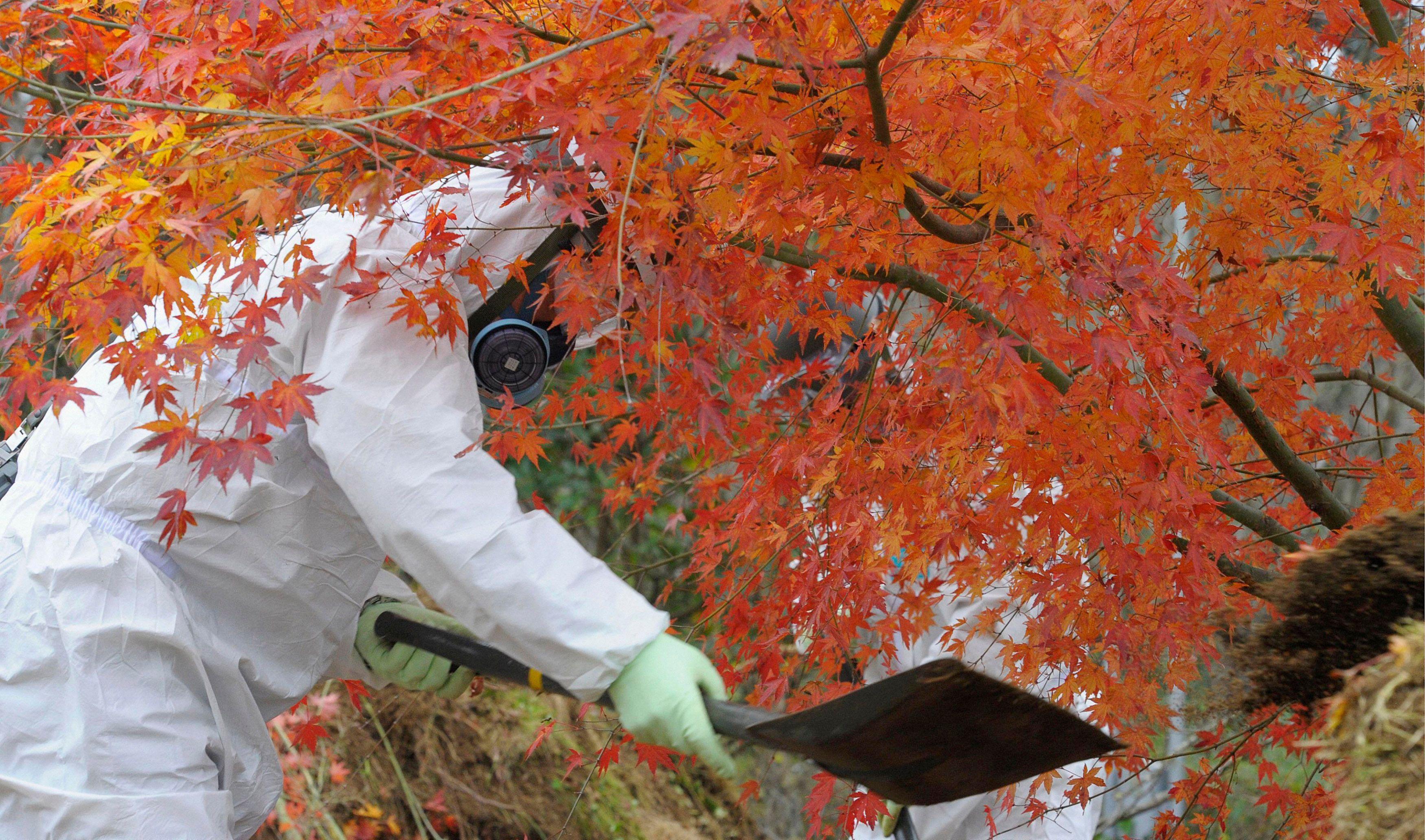La catastrophe nucléaire du 11 mars 2011 à Fukushima a eu un effet d'accélération sur des changements profonds au sein du pays.