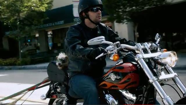 C'est une moto comme celle-ci qui a été vendue