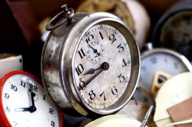 Les mouches n'ont pas la même perception du temps que les humains.
