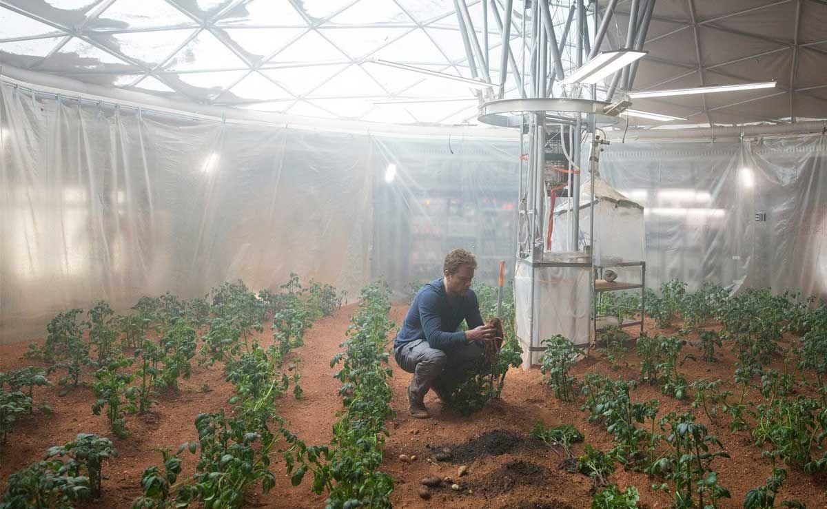Jusqu'où le robot peut-il remplacer l'homme en agriculture ?